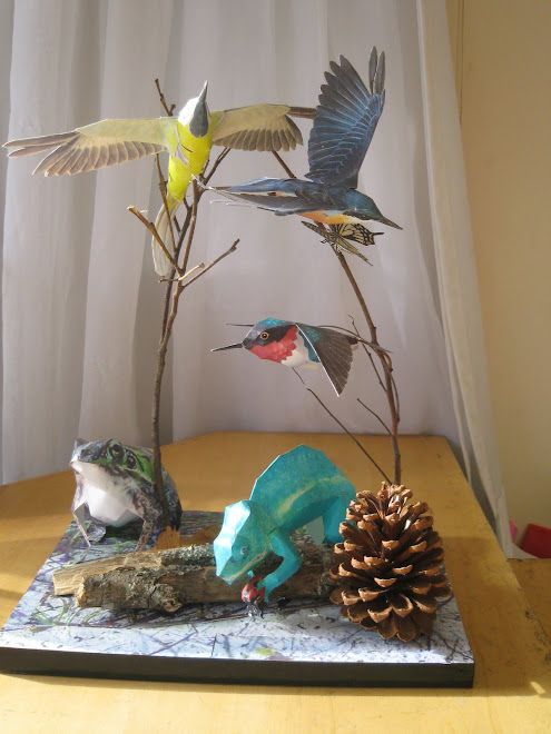 Pássaros com camaleão