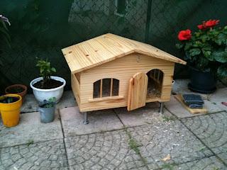 Les cr ations en bois de j p maison de jardin pour lapin for Petite maison de jardin en bois