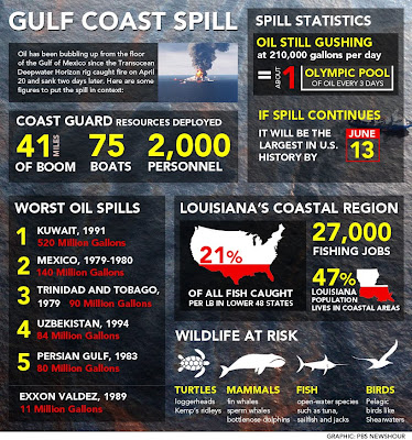 2010 British Petroleum Gulf Oil Spill write papers