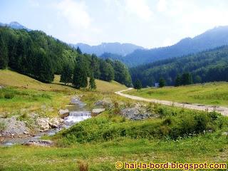 Valea Berii