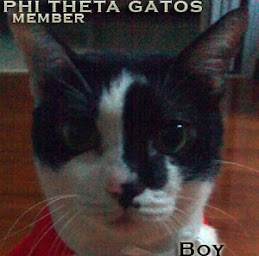 Member of the Phi Theta Gatos!