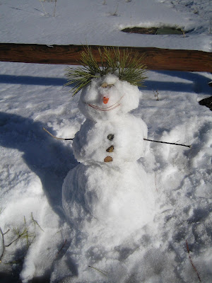 snowman near Sunset Crater