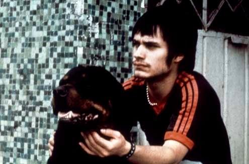 amores perros valeria. amores perros movie.