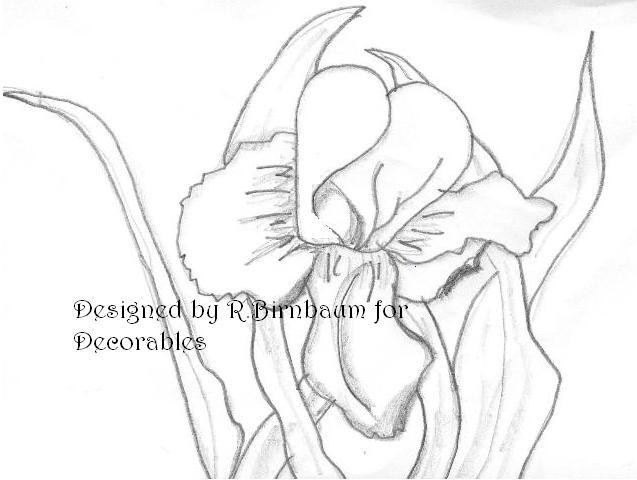 [iris+sketch+resized.jpg]
