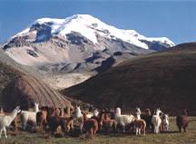 EL NEVADO CHIMBORAZO