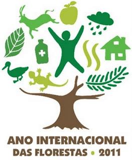 2011 Ano internacional das Florestas Florestas2011