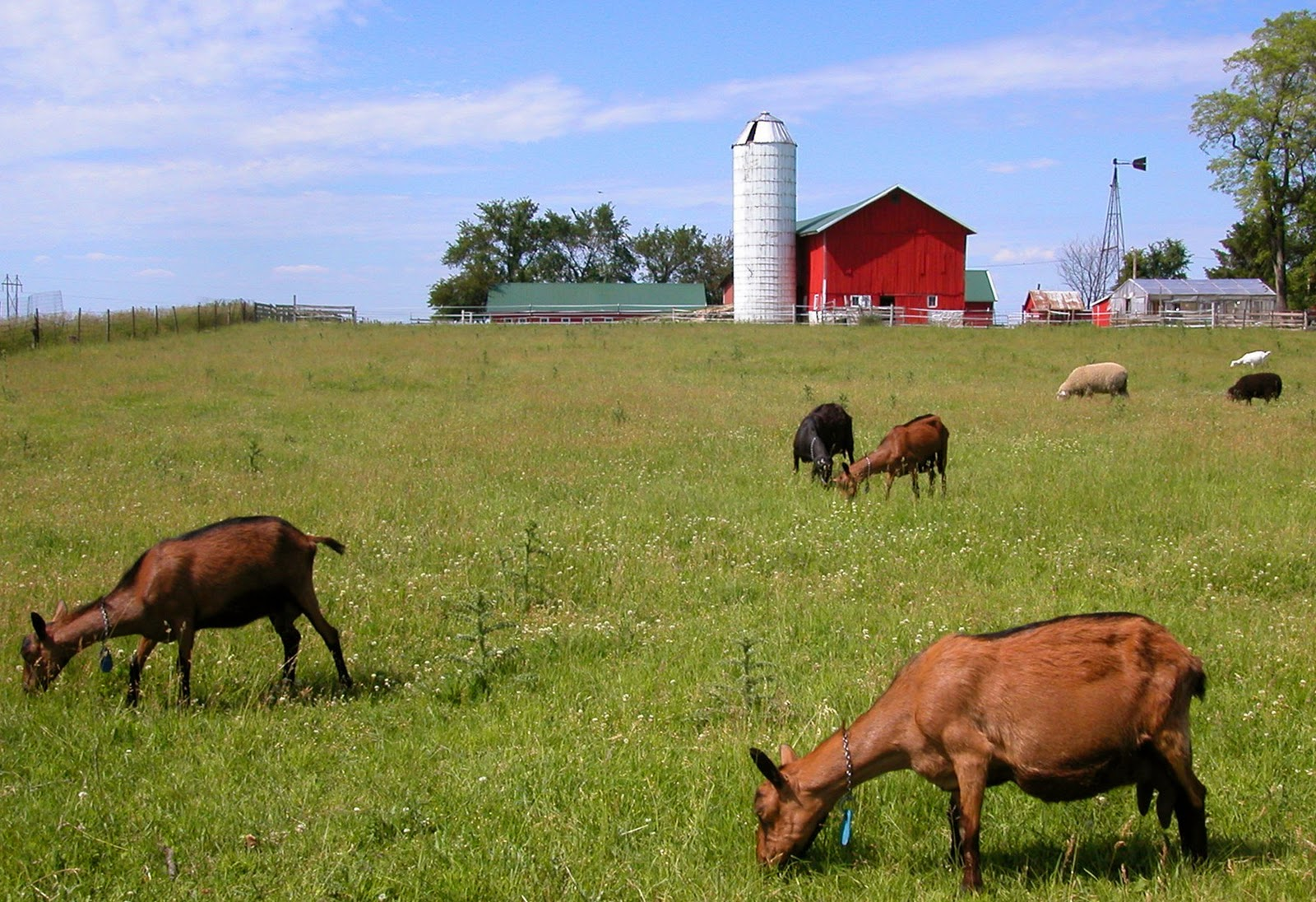 Bioblog sustainable agriculture the right choice for Ranch and rural living