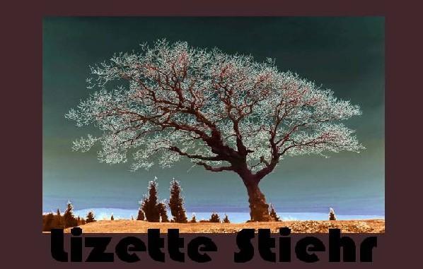 Lizette Stiehr