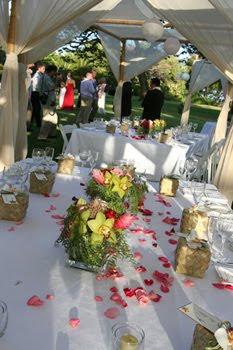 Hawaiian island wedding planners wedding reception ideas