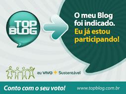 O AMAPÁ NO TOP BLOG 2010