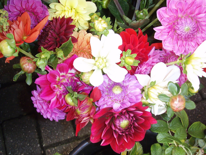 Pessoas especiais merecem flores
