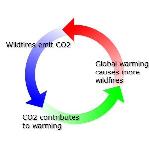 co2 and global warming Table of contents search for printer home: the discovery of global warming february 2018: the carbon dioxide greenhouse effect in the 19th century, scientists realized that gases in the atmosphere cause a greenhouse effect which affects the planet's temperature.