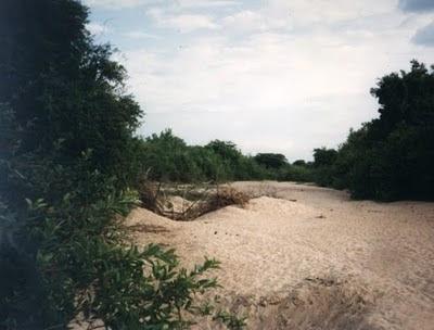 Súplica de um rio - Por Bérgson Frota / Fortaleza