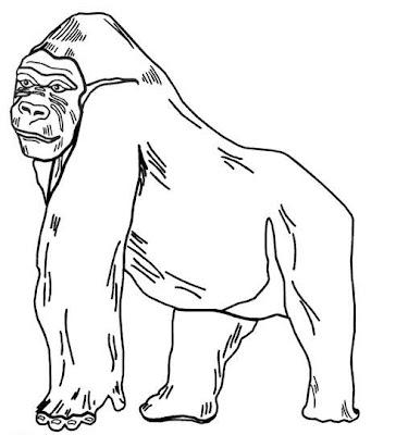 Ilustración de un gorila para colorear o pintar