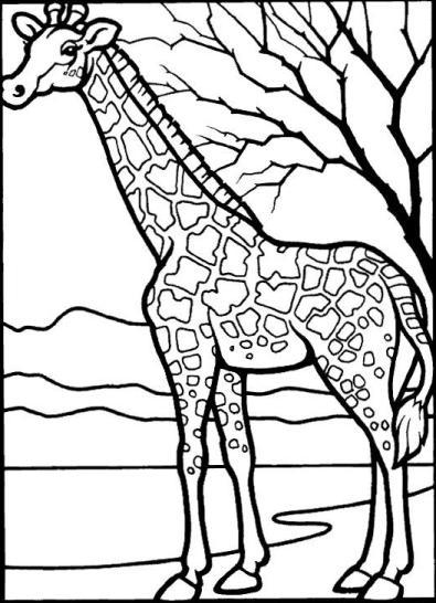 Ilustracion de un jirafa para colorear o pintar