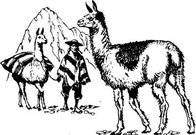 Ilustración de llamas serranas