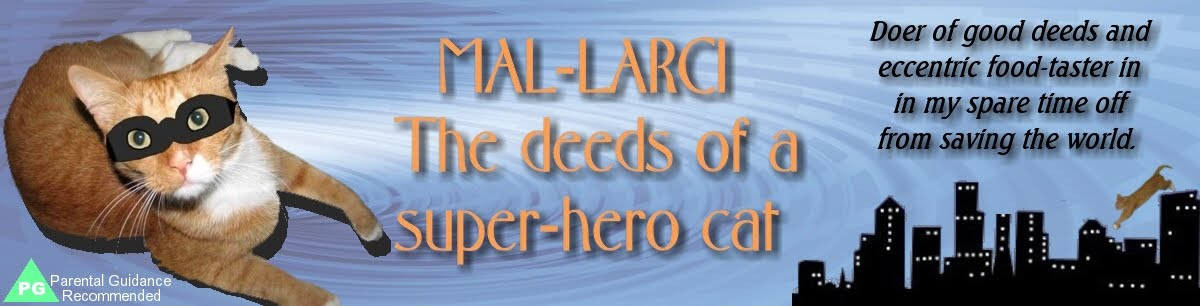 Mal-Larci: Superhero Cat!
