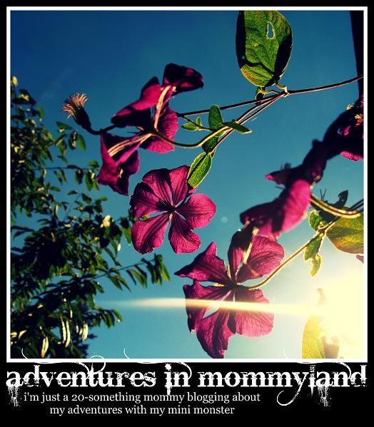 Adventures in Mommyland