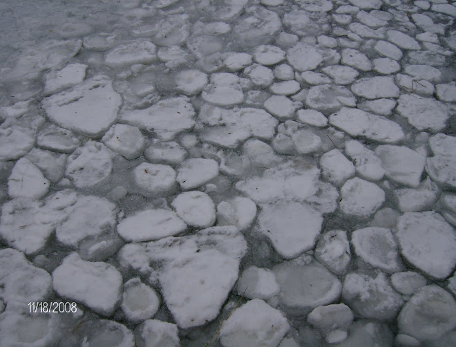 Ice forming on Leech Lake
