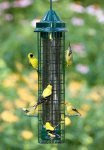 Squirrel Proof-Brome Squirrel Buster FINCH Feeder