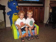 Rhett & Grant- 2 Years Old