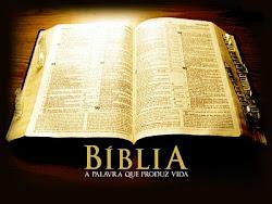 Leia a Bíblia On Line Agora !