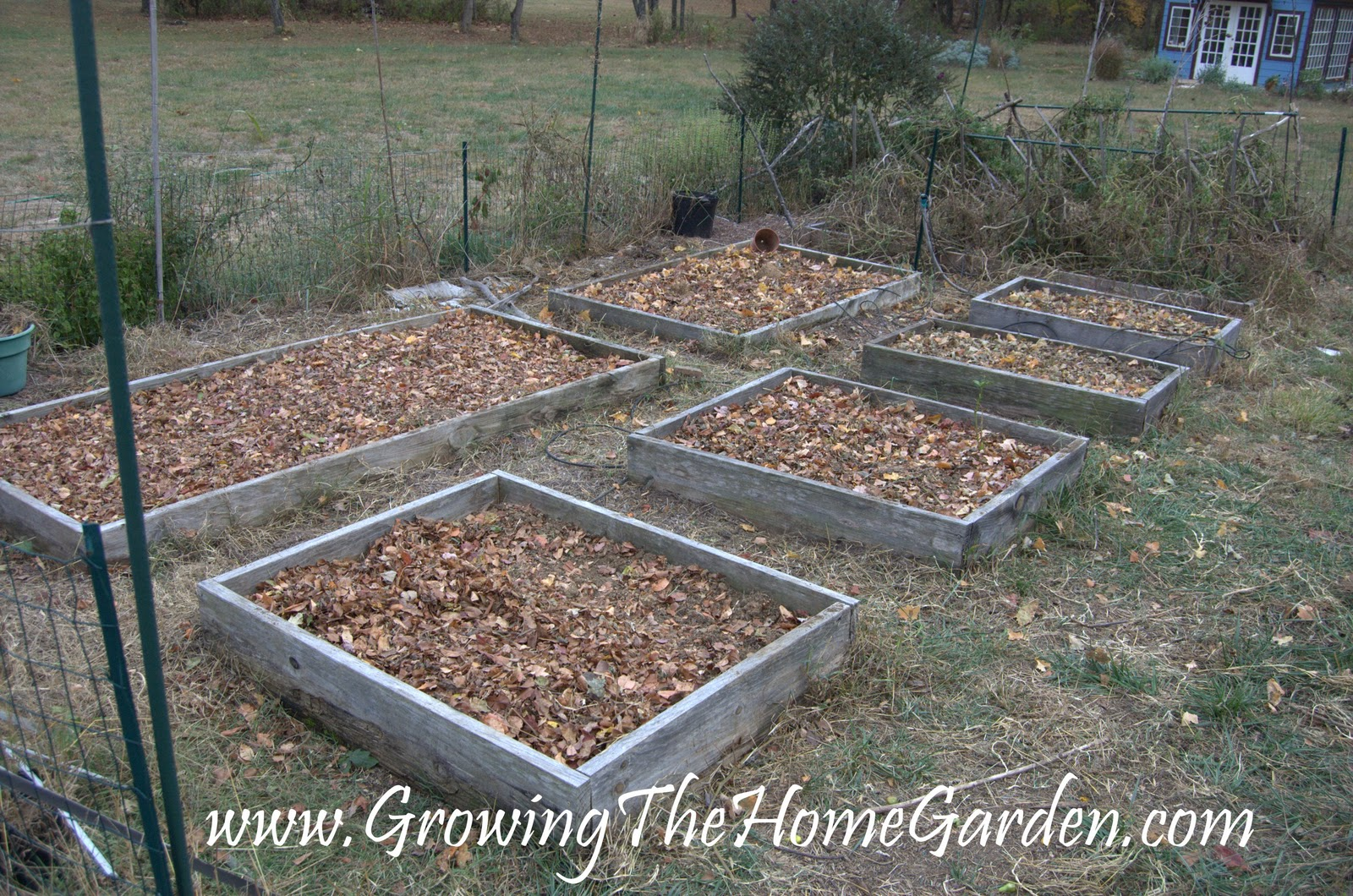 vegetable garden clean up for fall growing the home garden
