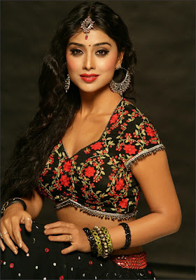 Gorgeous actress Shriya Saran Beautiful Photo Shoot