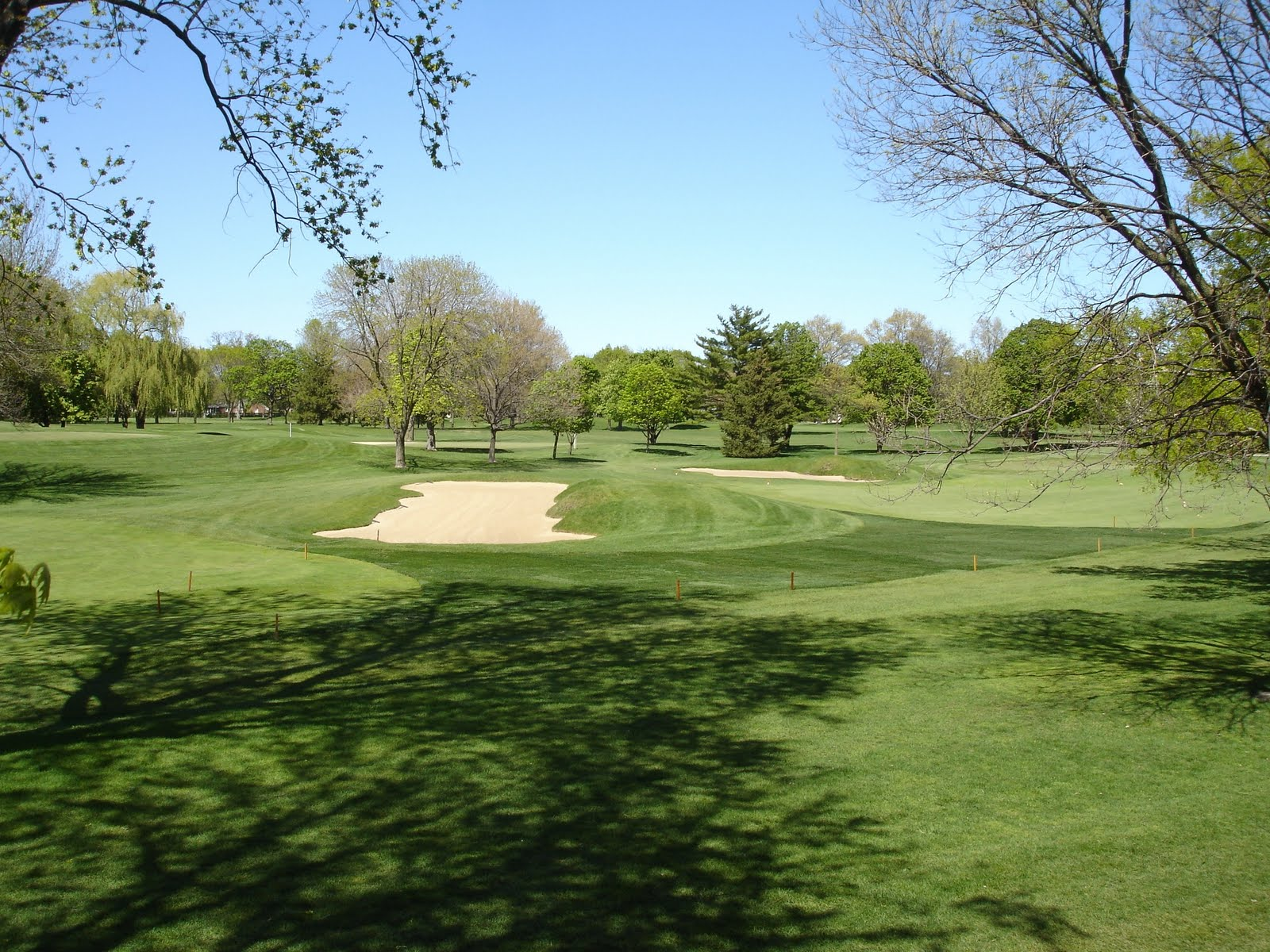 Things to look out for park ridge country club turfgrass for Park ridge