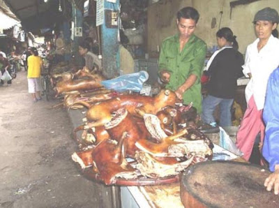 dog+meat2.jpg