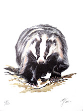 Láminas fauna en edición limitada