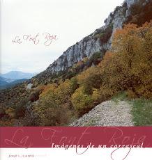 La Font Roja. Imágenes de un carrascal