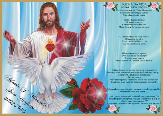 * O Sagrado Coração de Jesus *