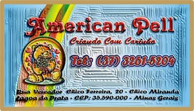[American+Pell.jpg]