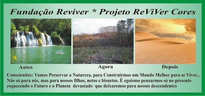 Fundação Reviver * Projeto Reviver Cores