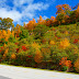 Asheville Selected as the #1 Fall Foliage Destination by TripAdvisor®
