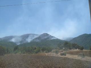 """""""Aspecto de la deforestación en El Hiloche"""""""