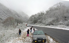 Ruta Nevada