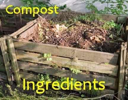compost pile  ingredients