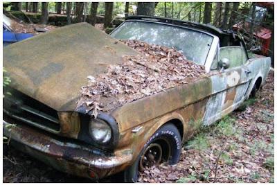Mustang Graveyard Rhode Island