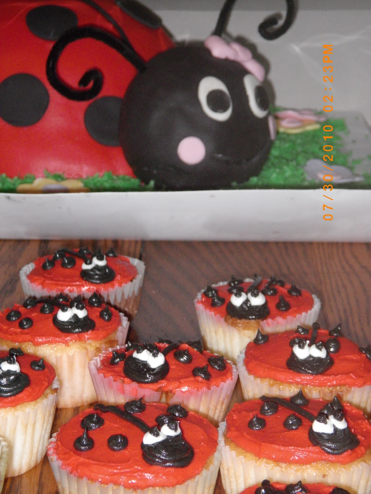 The Ladybug Head Was Made Of Rice Krispie Treats Then Entire Thing Covered In Homemade Marshmallow Fondant Grass Colored Coconut
