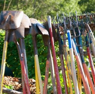 Huerta escolar y su importancia las herramientas que se for Herramientas que se utilizan en un vivero