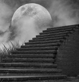1000 escalones hacia el cielo. (1000 steps to heaven).