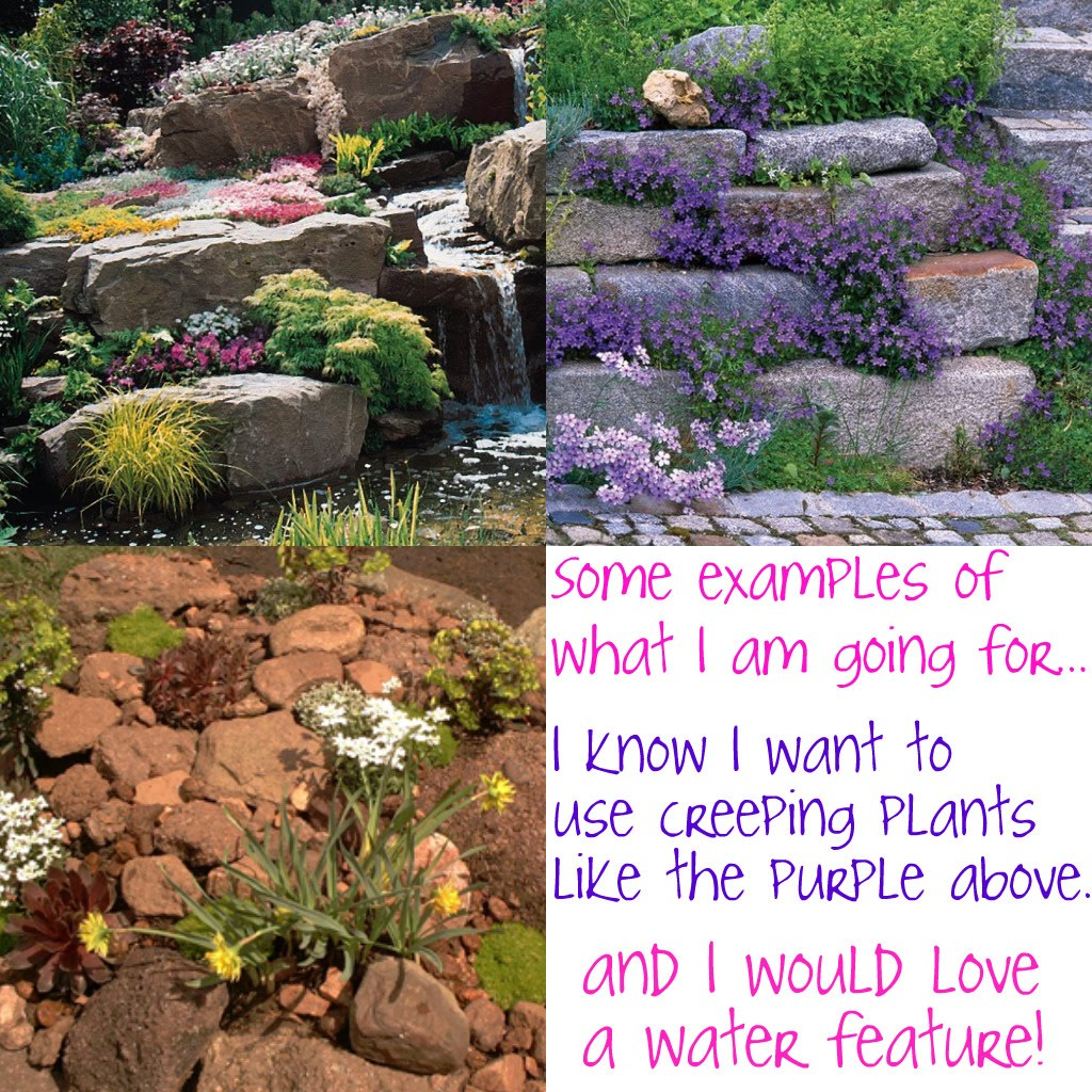 Small Garden Ideas With Rocks Photograph Small Rock Garden