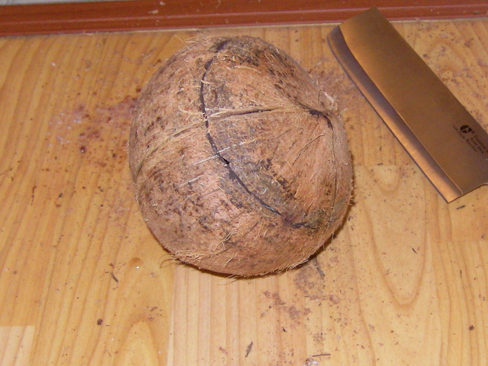 Как расколоть кокос в домашних условиях: инструкция 25