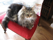 George who left us June 2011