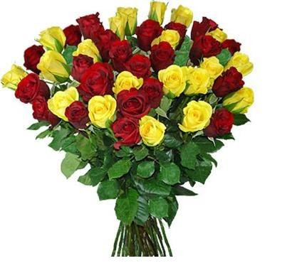 Best flowers in the world different flowers world