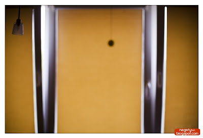 |1/500|f1.8|50mm|ISO 500|