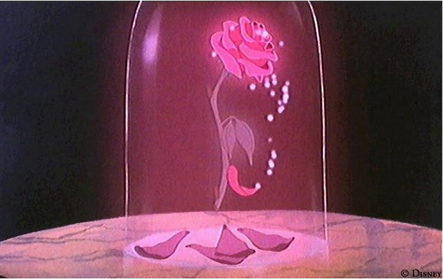 What 39 s next disney 39 s magic part 6 for Rose under glass