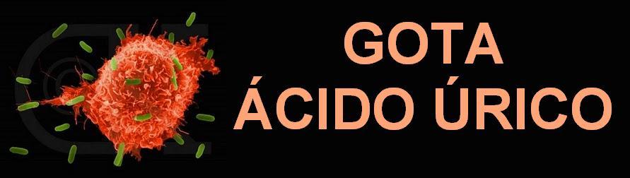 que alimentos comer para bajar el acido urico exceso acido urico